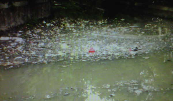 Sampah di Sungai Pademangan.