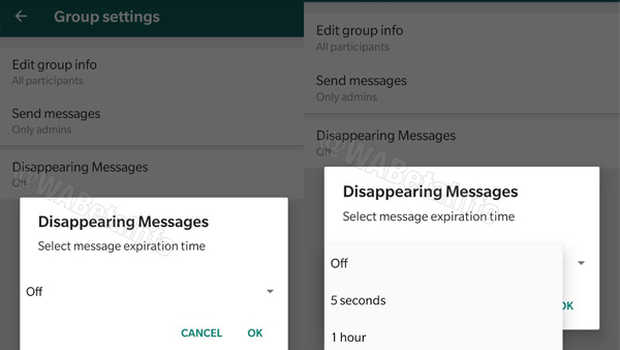 fitur Disappearing Messages