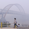 Haze From Forest Fires on Sumatra, Kalimantan Disrupt Aviation and Shipping, as Gov't Ramps Up Response
