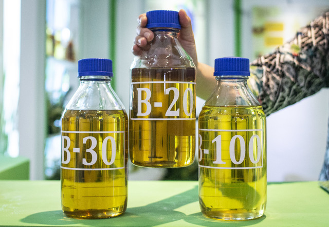 Indonesia's Thirst for Biodiesel May Undercut Global Palm Oil Supply