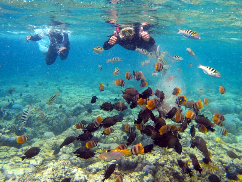 The Ministry of Tourism is continuing its efforts to increase the number of Chinese tourists visiting Indonesia, with a promotion featuring scuba diving destinations in the archipelago set to take place in three cities in China this month. (Beritasatu.com Photo/Danung Arifin)