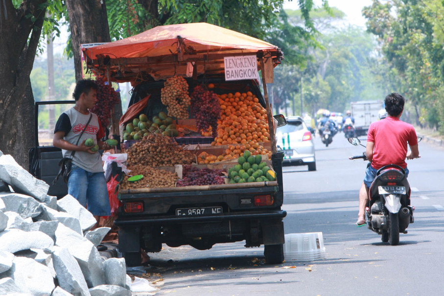 A fruit van steals an ideal spot under a tree in Bekasi on Sept. 19. (JG Photo/Yudhi Sukma Wijaya)