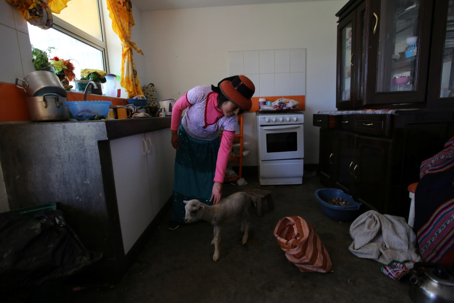 Margot Portilla stands with a lamb in the kitchen of her home in the town of Nueva Fuerabamba in Apurimac, Peru, October 3, 2017. Reuters Photo/Mariana Bazo