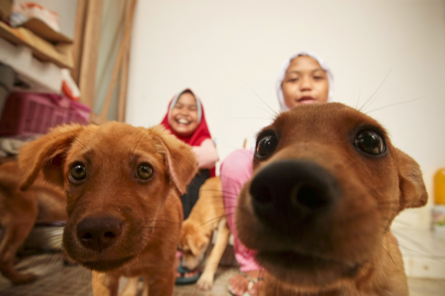 Hesti's twin daughters, Ayunda and Adinda, 11, are often bullied for keeping dogs in their house. (JG Photo/Yudha Baskoro)
