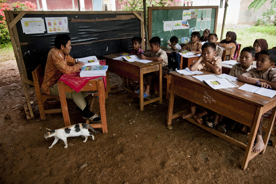 A host of roaming animals enter and exit the makeshift classroom as they please. (JG Photo / Yudha Baskoro)