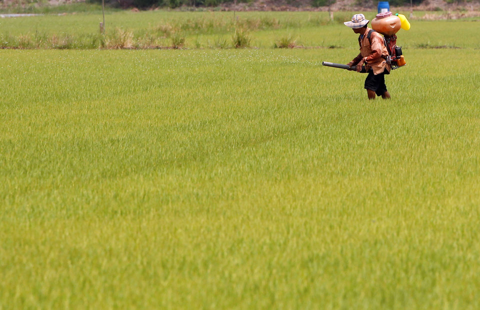 Thailand Increases 2017 Rice Export Goal to 10 Million T