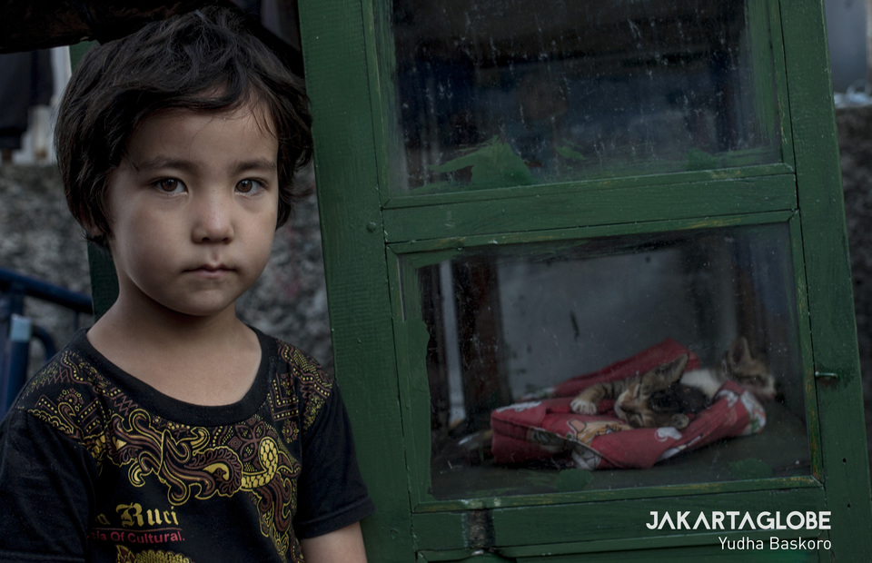 Atifa, a five years old young refugee from Afghanistan shows his pet, a stranded cat on Tuesday (18/06) (JG Photo/Yudha Baskoro)