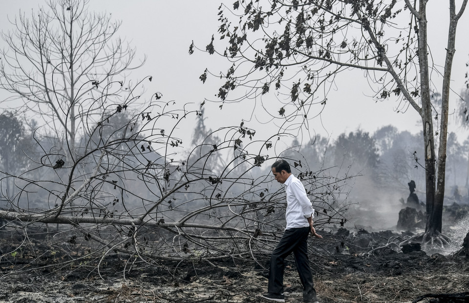 President Joko Widodo walks without wearing a mask during his visits at forest fires area in Pekanbaru, Riau on Tuesday (17/09). (Antara Photo/Puspa Perwitasari)