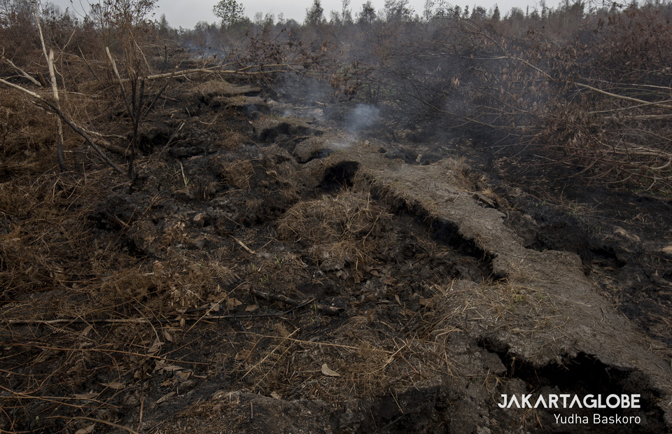 The main road in Ganepo Village was damaged by a forest fire in Sampit, Central Kalimantan on Wednesday (02/10). (JG Photo/Yudha Baskoro)