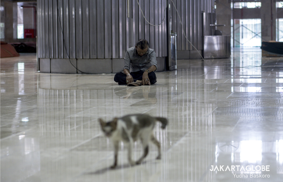 A cat passes in front of a person praying in the prayer area in the Istiqlal Mosque, Central Jakarta on Friday (20/03). (JG Photo/Yudha Baskoro)